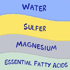 water, sulfer, magnesium, essential fatty acids